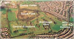 Bradlaugh Fields Local Nature Reserve